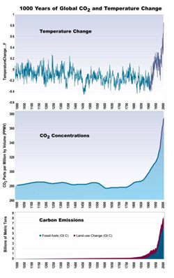 CO2 over last 1000 years