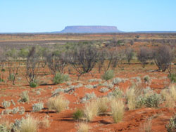 outback.JPG