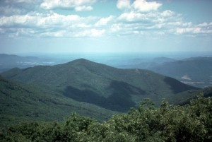 Appalachians near the Blue Ridge Parkway