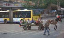 sm-horsedrawncart