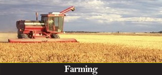 CATEGORY: Farming
