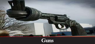 CATEGORY: Guns