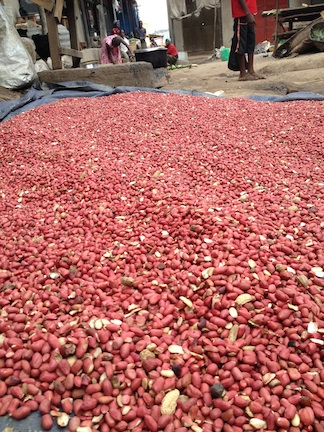 Drying peanuts in the sun