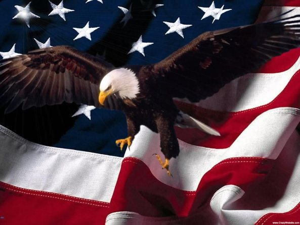 2f45d-free_wallpaper_patriotic_eagle_american_flag_background-1-1024x768
