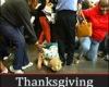 Thanksgiving, Black Friday, Black Thursday