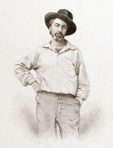 Walt Whitman (1819-1892), age 37, frontispiece to Leaves of grass, Fulton St., Brooklyn, N.Y., 1855, steel engraving by Samuel Hollyer from a lost daguerreotype by Gabriel Harrison.