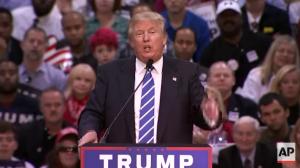 Donald Trump, Public Idiot