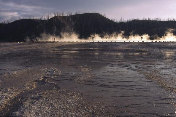 "Greg Stene: ""Yellowstone"""