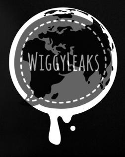 wikileaks-netbook-globe-01-02-01