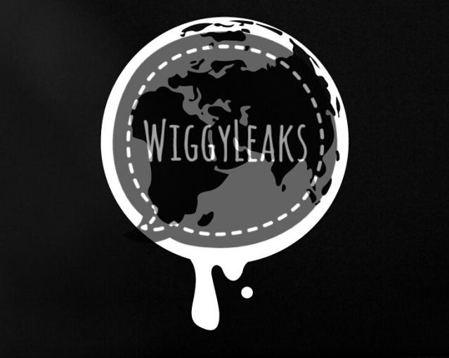 wikileaks-netbook-globe-01-02