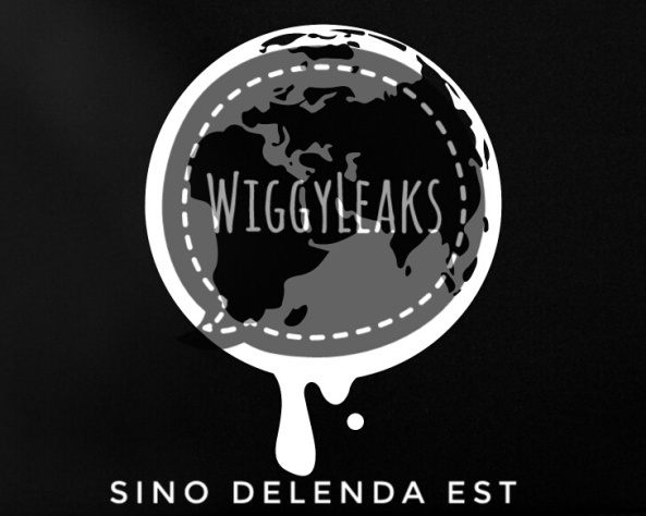 wikileaks-netbook-globe-01-03