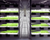 Automated indoor farm capable of producing 30,000 heads of lettuce per day