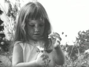 "From Lydon Johnson's ""Daisy"" ad (image credit: Smithsonian Magazine)"