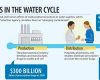 Pharmaceuticals-in-the-water-cycle