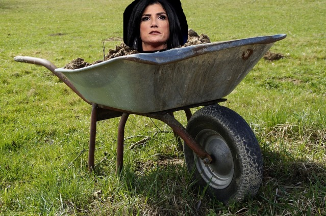 wheelbarrow-2188081_960_720