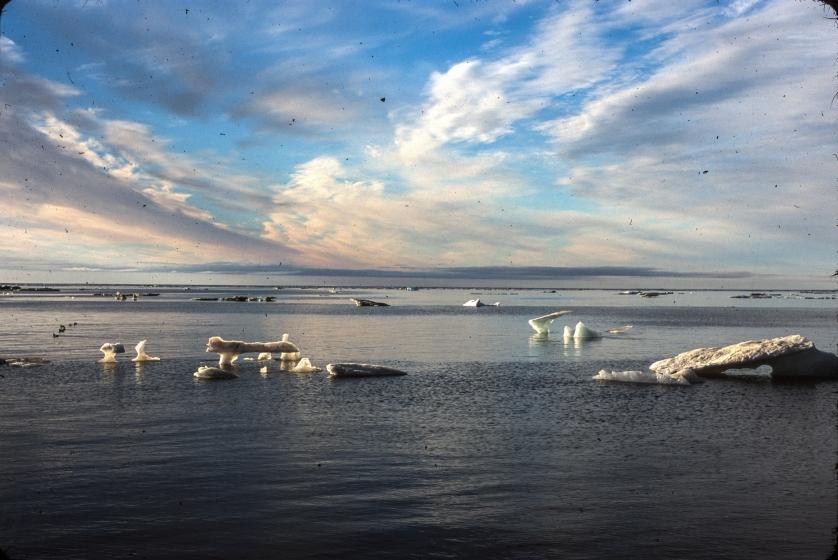 The Arctic Circle, Alaska, Cooper Island, Barrow, Climate Change, Tamara Enz