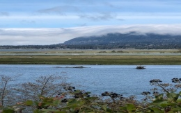 Oregon coast, The Road not Taken Enough, Tamara Enz